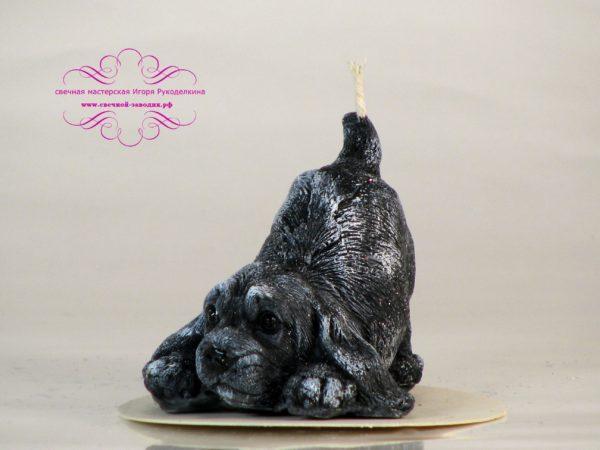 свеча собака черная